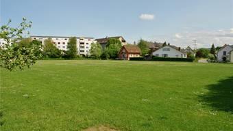 Bleibt vorerst grün: Die Gemeindeversammlung lehnte den Verkauf des ehemaligen Sportplatzes Riburg ab. Wie es nun damit weitergeht, ist offen. nbo/archiv