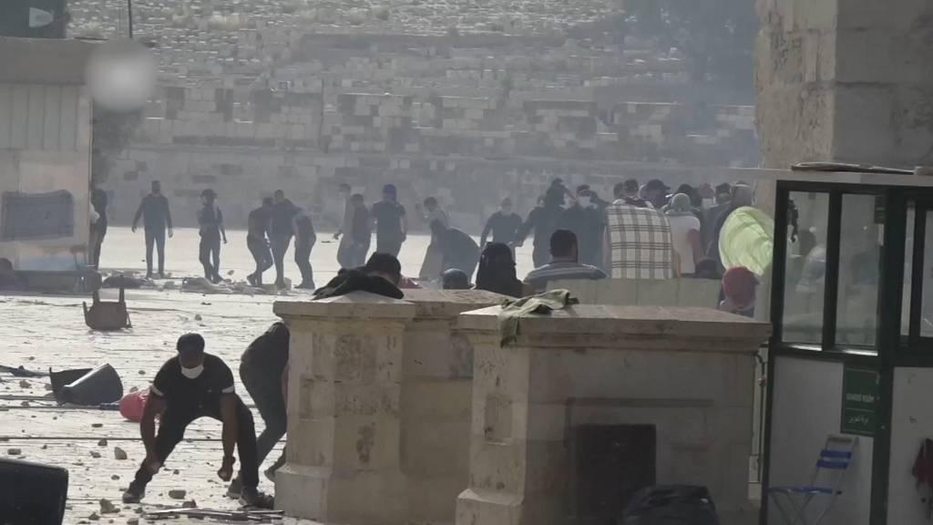 Jerusalem: Auseinandersetzungen auf dem Tempelberg fordern hunderte Verletzte