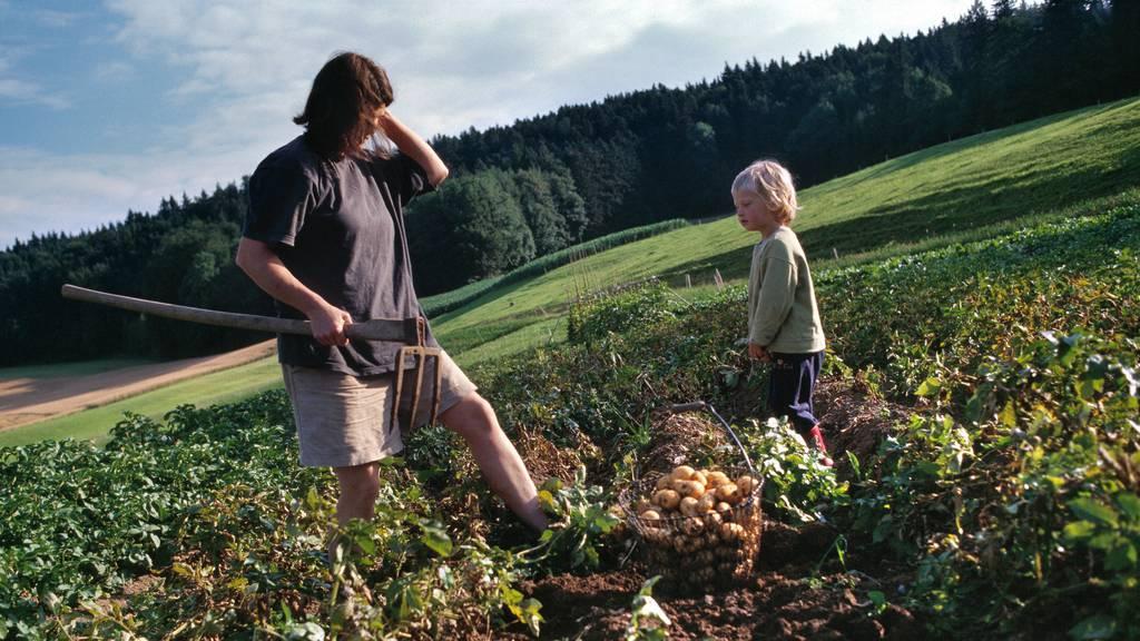 Kleinbauern wollen mehr Strukturvielfalt und Biodiversität