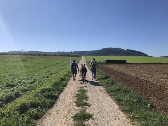 Unterwegs über die Felder kurz vor Linn.