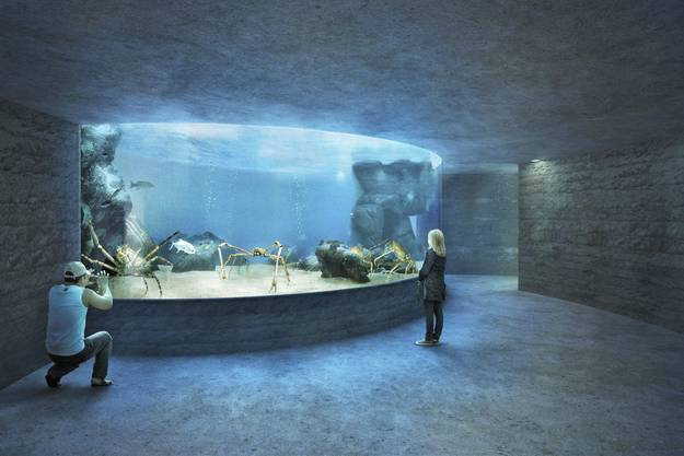 Ozeanium des Zolli Basel: Das Projekt «Seacliff» hat den Architekturwettbewerb gewonnen.