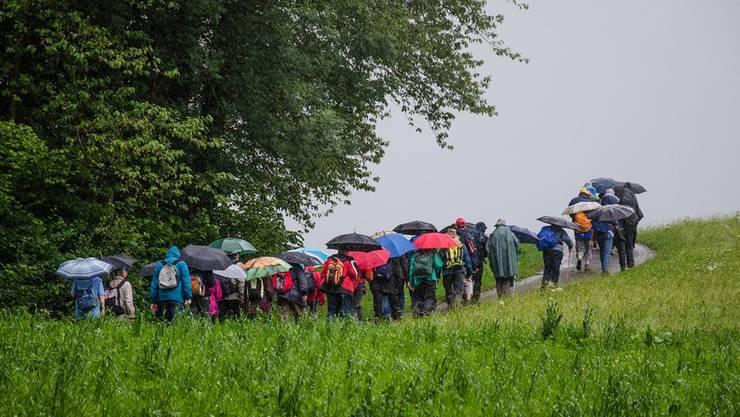 Regen? Für die Leserwanderer kein Problem.