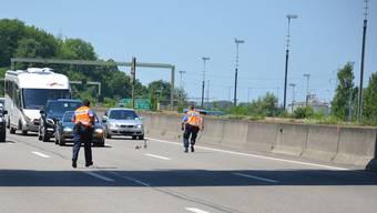 Enten-Familie sorgt für Vollsperrung der Autobahnbei Pratteln