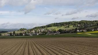 Im Zürcher Weinland ist das Krebsrisiko bei Kindern höher als anderswo in der Schweiz.