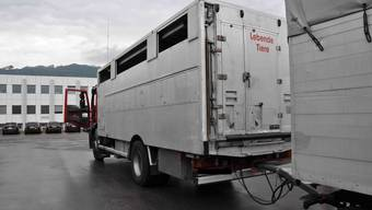 Die Polizei stellte ungenügende Einstreu der Ladeflächen, Nichteinhalten des Mindestraumbedarfs der Tiere sowie überladene Fahrzeuge fest.