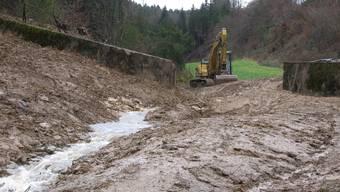 Seckenbergbach: Das Gewässer wird mit baulichen Massnahmen abschnittweise als Laichgewässer nutzbar gemacht.  (Bild: Werner Hostettler)
