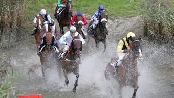 Silvia Casanova mit dem Pferd White Rules gewannen souverän (Symbolbild).
