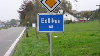 Gemeinde Bellikon mit besserer Rechnung als budgetiert (dmi)