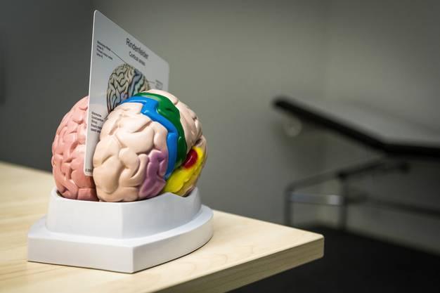 Das neue Ambulatorium der Psychiatrischen Dienste Aargau AG ist auf die Alters- und Neuropsychiatrie ausgerichtet.