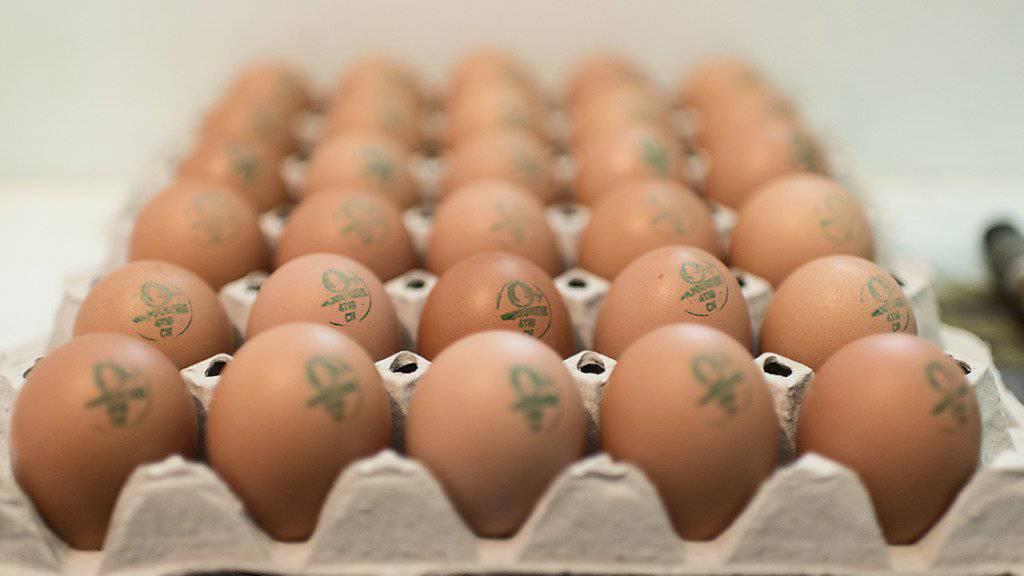 In der Schweiz werden pro Jahr 177 Eier pro Kopf gegessen. Stark zulegen konnten die Bio-Eier. Ihr Absatz stieg um 7,6 Prozent. (Symbolbild)