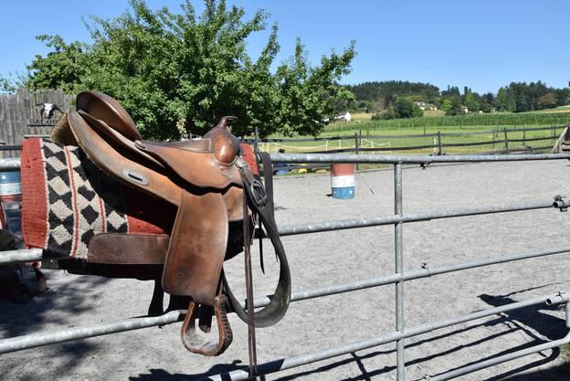 Auf der Tatanka Ranch wird im Western-Stil geritten