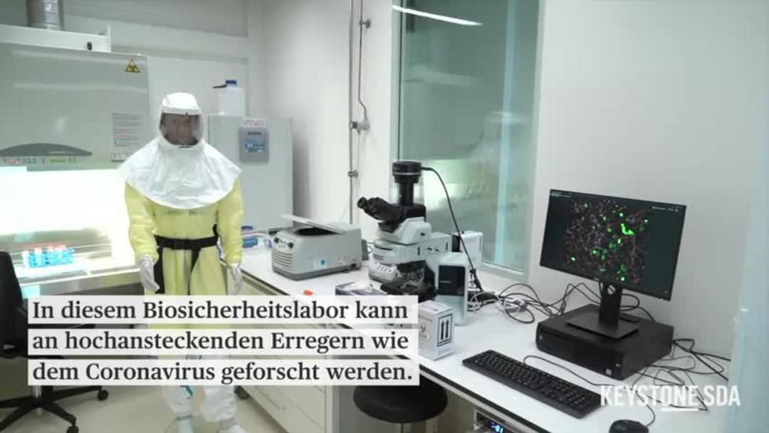 Forschung an Sars-Cov-2 in neuem Berner Biosicherheitslabor