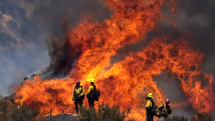 Feuerwehrleute sind bei einem Waldbrand - dem sogenannten «Apple Fire» - im US-Bundesstaat Kalifornien im Einsatz. Foto: Ringo H.W. Chiu/AP/dpa