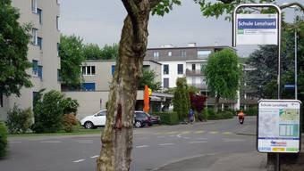 Die Bushaltestellen an der Zeughaus- und Hallwilstrasse rund ums Lenzhard-Schulhaus bleiben an den bisherigen Positionen.