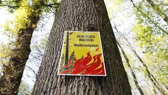Die Waldbrandgefahr ist im Vergleich zur letzen Woche gesunken. (Archivbild)