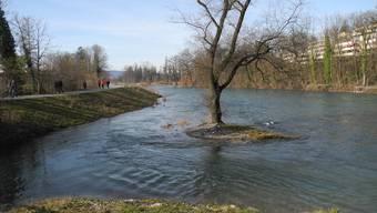 Die renaturierte Limmat hat einen natürlicheren Flusslauf und bietet mehr Lebensraum für Tiere.