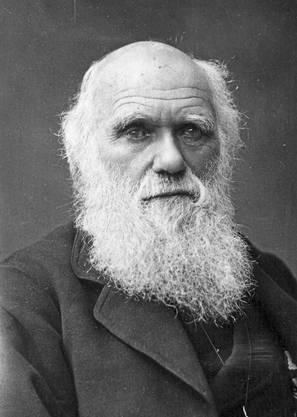 Charles Darwin, Naturwissenschafter: «Ich bewunderte früher Humboldt, jetzt bete ich ihn beinahe an; er allein gibt einen Begriff von den Empfindungen, welche in der Seele erregt werden beim ersten Betreten der Tropen.»