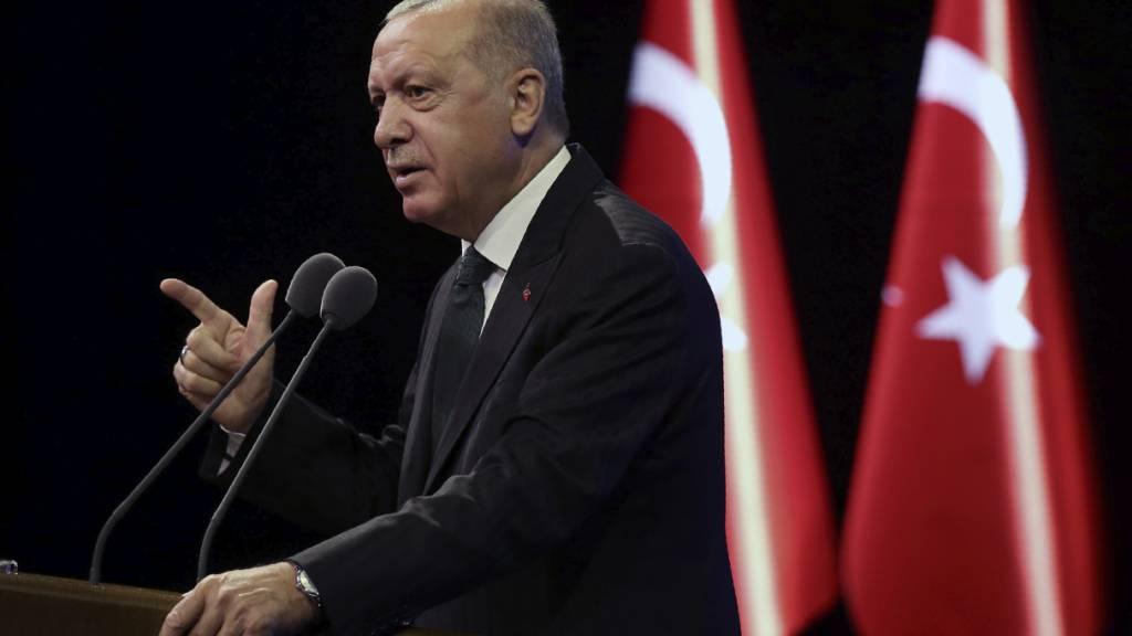 Botschafter-Eklat: Erdogan signalisiert Entspannung