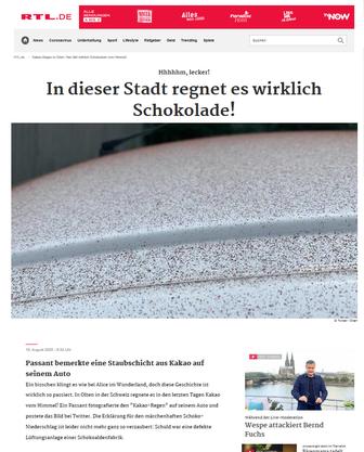 Der Artikel auf RTL.de