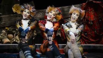«Cats» im Musical Theater Basel