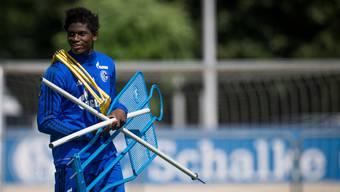 Bald wieder voll einsatzfähig: Breel Embolo beim Trainingsauftakt mit Schalke.