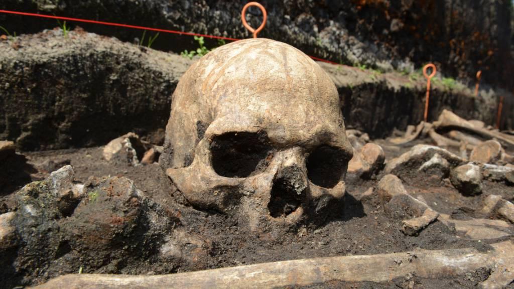 Bronzezeitlicher Schädel an der Tollense.