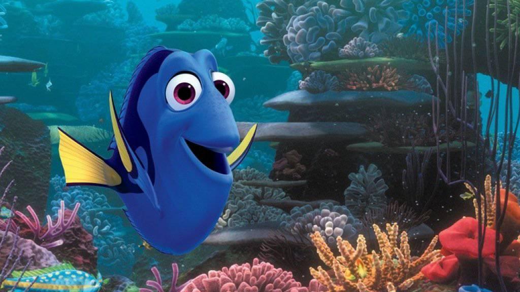 Der Animationsfilm «Finding Dory» hat an den nordamerikanischen Kinokassen Rekorde gebrochen (Archiv)