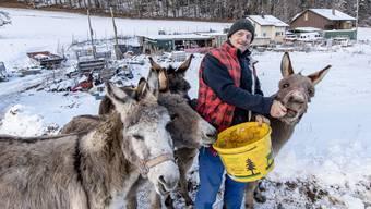 Daniel Quenet mit Eseln auf dem Schemelhof. Für zwei davon hat er einen neuen Halter gefunden.