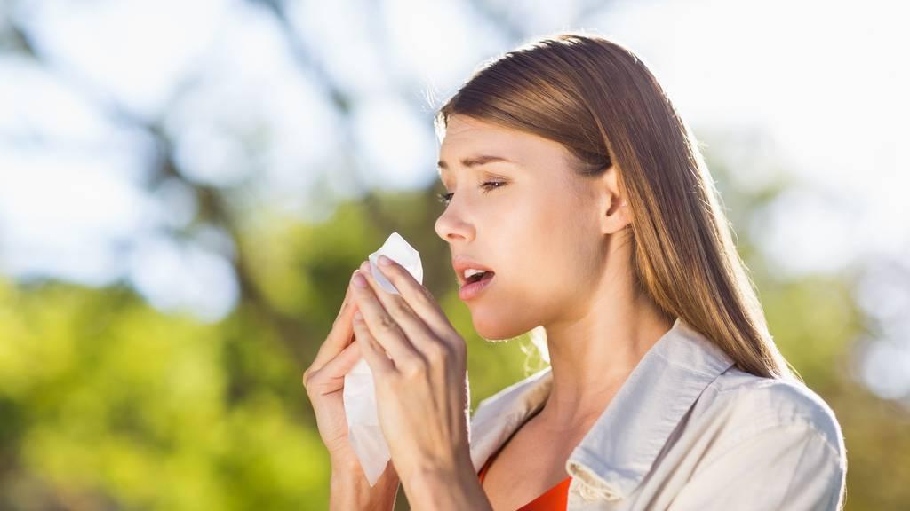 «Hatschi»: Jetzt beginnt die Saison der Pollengeplagten