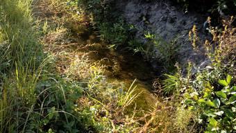 Der Wasserabfluss ist bei auftretendem Hochwasser zu knapp dimensioniert.