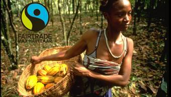 Max Havelaar Fairtrade-Kakao.jpg