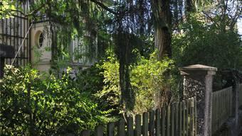 Der grosse Grünanteil mache den Charakter des Quartiers aus. Einer Reduktion der Grünflächenziffer steht Pro Aarau kritisch gegenüber. Ueli Wild