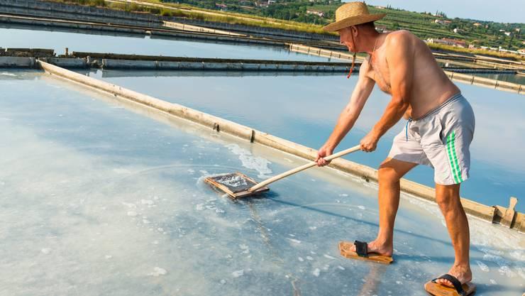 Ein Mann gewinnt von Hand Salzblüten. Die Salinen von Piran haben die gleichnamige Küstenstadt berühmt gemacht. Bild: Getty Images
