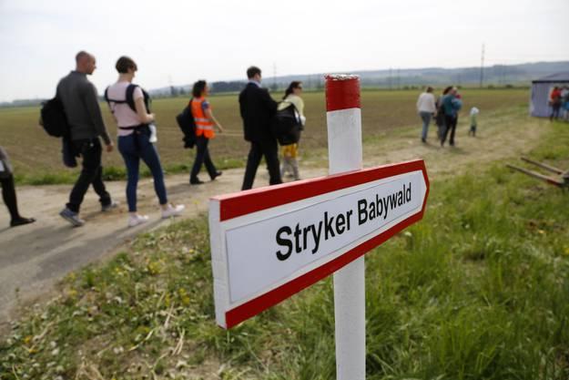 Der Stryker Babywald ist wohl vorerst ein Wäldchen
