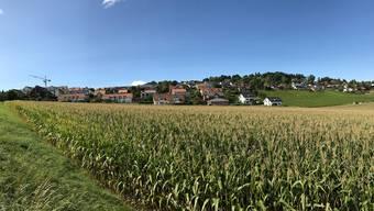 An diesem Hügel im waadtländischen Yens wohnen die Schönen und Reichen – auch die Bundesratskandidatin Isabelle Moret.