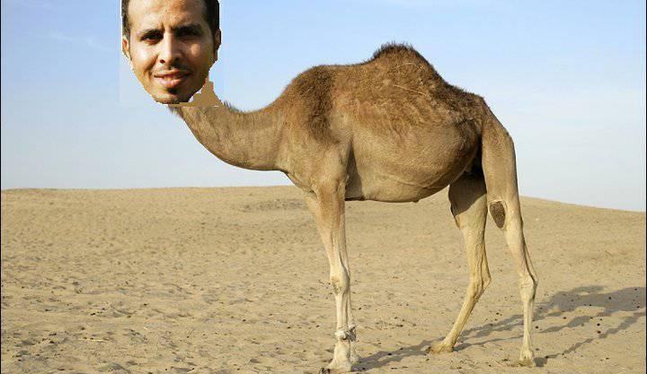 «Du Kamel!», dachte sich Patrik Schmucki wohl und schenkte Al Ghamdi passend dazu den Körper eines Arabischen Kamels.