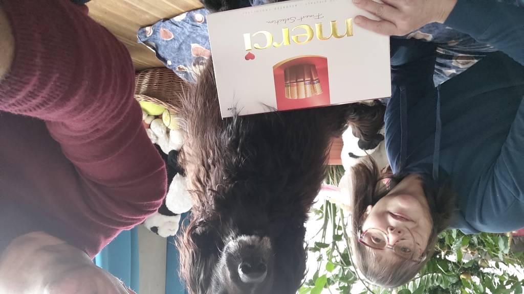 Selbstloses Rheintaler Ehepaar veröffentlicht Buch über Weihnachtsaktion