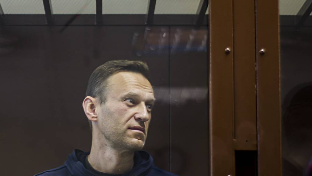 Kremlgegner Nawalny in Russland im Straflager
