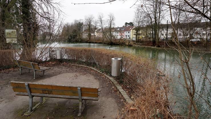 Soll den neuen Anwohnern als Garten und der Öffentlichkeit besser zugänglich sein: Der derzeit eingezäunte Allschwiler Weiher.