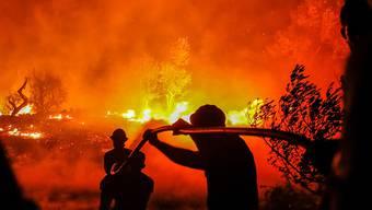 Ein verletzter Feuerwehrmann: In Portugal kämpfen hunderte Einsatzkräfte gegen Waldbrände. (Archivbild)