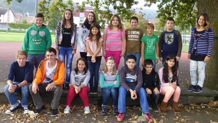 Die gewählten Friedensstifter für das Schuljahr 2013/14