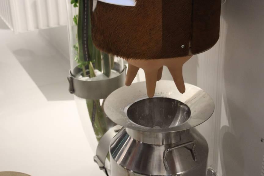 Die Milch ist ein wichtiger Rohstoff der Maestrani-Schokolade (Bild: FM1Today/Lara Abderhalden)