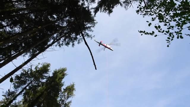 Im Chlöpfibeerimoos werden gefällte Bäume mit dem Heli abtransportiert