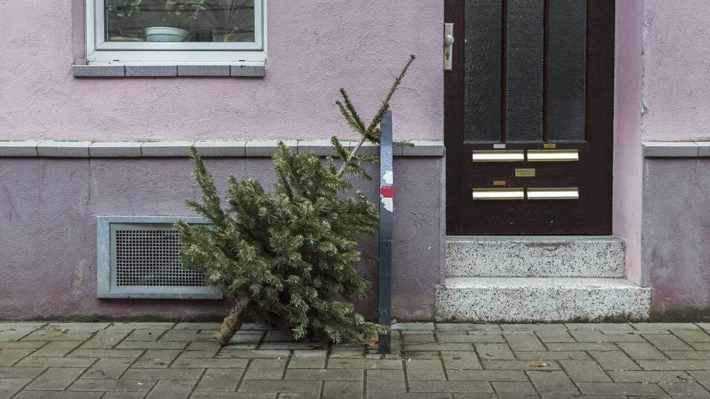 Wann wird der Christbaum abgeräumt und wo entsorgt?