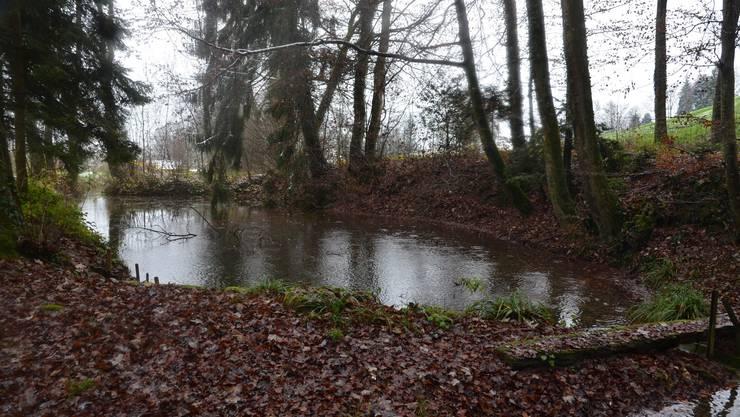 Der Weiher, hier nur ein Teil zu sehen, bot genügend Wasserstau für den Betrieb der Mühle.