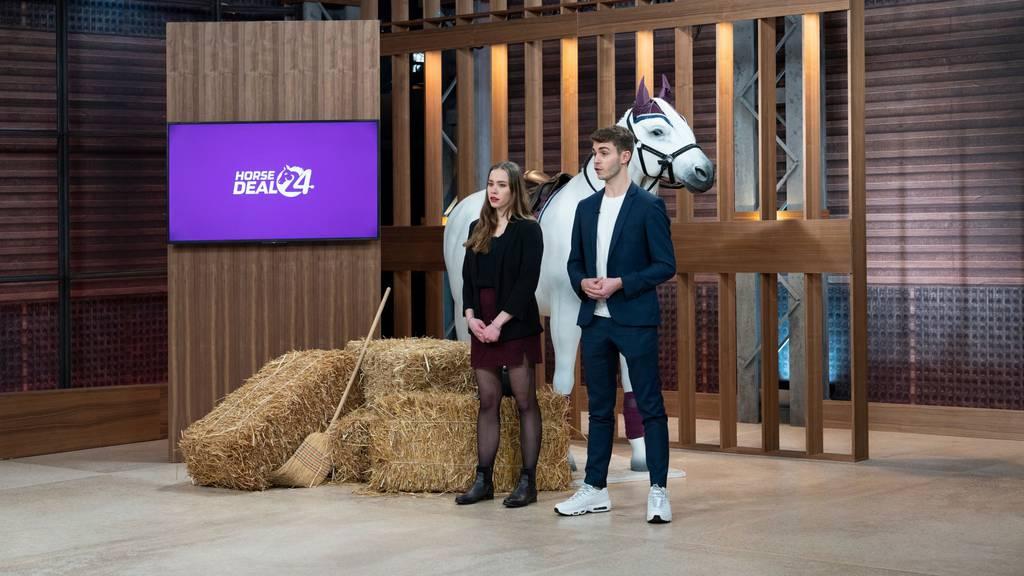 HorseDeal24: Die Plattform für Reitbeteiligung