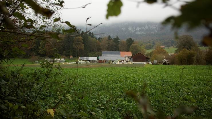Der Hof von Landwirt Ernst Flückiger liegt in Rüttenen, gehört aber zur Gemeinde Oberdorf.