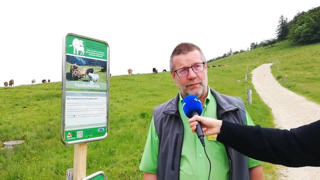 Heinz Feldmann erklärt, wie man sich auf einer Kuhweide verhalten soll