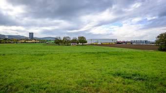 Die Investoren dürfen kommen: Mit diesen Flächen im Osten von Pratteln (hinten links: Der Ceres-Tower beim Bahnhof) kann der Kanton auf Werbetour gehen.