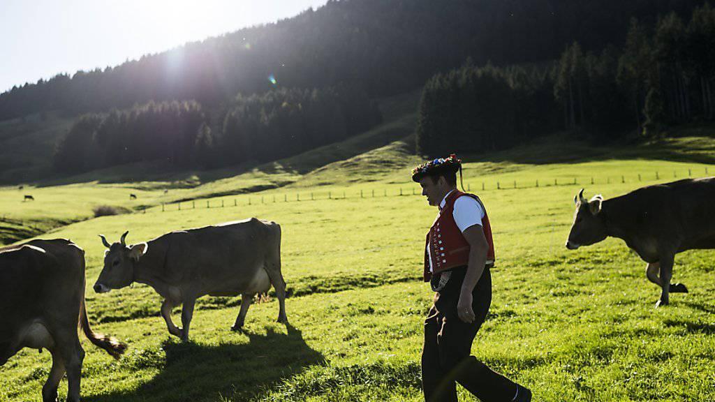 Der Bund muss sparen. Der Bundesrat will den Rotstift auch bei den Bauern ansetzen. Diese sollen ab 2018 fast 200 Millionen Franken weniger bekommen. (Archivbild)
